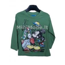 Palaidinė Mickey